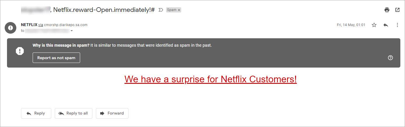 netflix fake phishing email